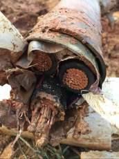 双鸭山电缆回收 双鸭山二手电缆回收价格