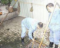 西城区马甸环卫所污水井清掏150*1056*1453
