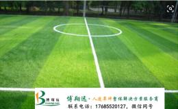 武城學校人造足球場草坪建設方案
