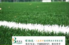 安乡人工草坪足球场排水