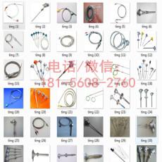 杭州双针热电偶精度高1ECE1D