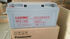 LUOKIMPC-1217/12V17AH蓄电池基站专用