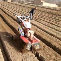 小型打土开沟机 大葱黄姜开沟培土机