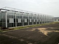 甘肃兰州1万平玻璃温室大棚595外墙承建厂家