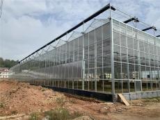 浙江绍兴智能化有机蔬菜温室大棚16建设厂家