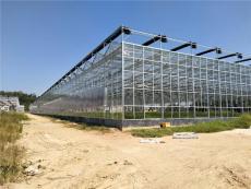 安徽合肥無公害蔬菜大棚玻璃溫室8000平方案