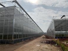 安徽淮南無土化栽培大棚溫室智能玻璃型成本
