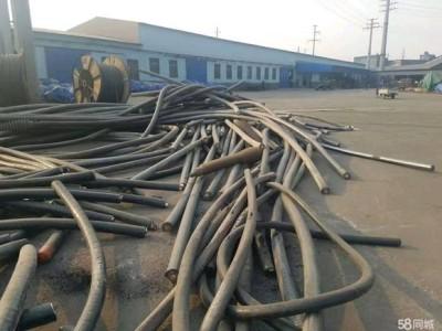 东安区电缆回收 东安区全新电缆回收价格