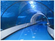 广州海鲜池订做  酒店海鲜池 超市海鲜池