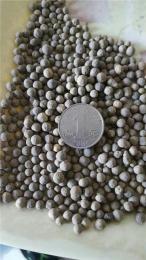 杭州城市污水用陶粒滤料的厂家价格