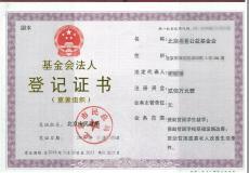 个人想成立北京的基金会需要什么条件及流程