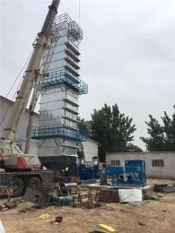 积木式结构粮食烘干设备水稻烘干塔容量高