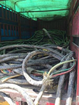泗洪縣電纜回收 泗洪縣全新電纜回收價格