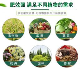 用什么发酵剂发酵养粪做肥料不烧根