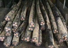 鲁甸县电缆回收 鲁甸县全新电缆回收价格