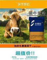 肉牛養殖基礎知識養牛人必須掌握的知識