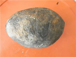 蛋化石上门收购行情及价格