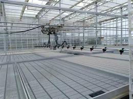 温室育苗喷灌机/室内种植果蔬专用水车