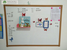 Magwall易擦易写PET膜居家广东磁性软白板