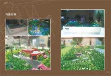 呼和浩特市沙盤模型制作
