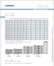 湛江荷貝克 松樹蓄電池OPZV1500