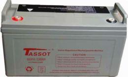 泰斯特STS12V100AH蓄電池基站專用