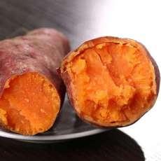 供应广东西瓜红番薯 批发西瓜红番薯
