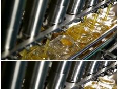 蜂蜜原料加工厂家-徽蜂堂