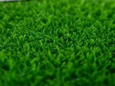 河北石家庄众踏人造草坪运动动草悬浮地板生