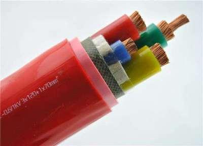 AGR硅橡胶电缆中旺特电缆