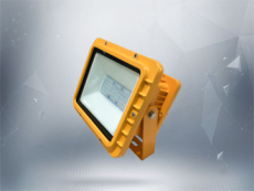 额定功率50W 高效节能防爆led泛光灯壁挂式