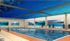 廠家供應鋼結構拆裝游泳池