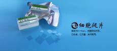 上海百千生物J24001方形圆形24孔板细胞爬片