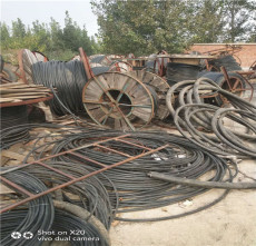 回收鋼芯鋁線 鋁芯電纜回收