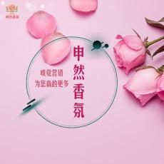 重庆空调管道加装香氛系统丨全隐藏式安装