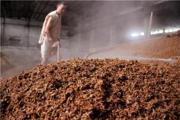 瀘州老窖原酒坊供應商 個人喜好品牌酒
