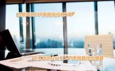 浙江绍兴SAP代理商 绍兴SAP咨询公司 选择优