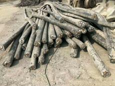 任丘市电缆回收 任丘市电线电缆回收价格