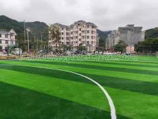 人工草足球场铺设及专业足球场施工建设厂家