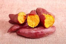 湛江自種自銷富曬沙地西瓜紅紅薯