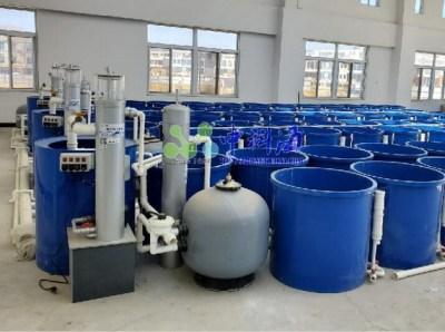 水生物循环水实验系统设备