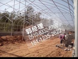 朔州玻璃温室多少钱一吨推荐访问