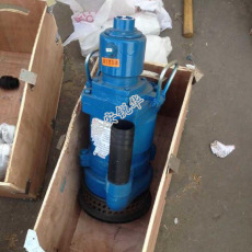 FQW30-50風動潛水泵立式潛水泵