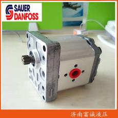 現貨齒輪泵 SNP2NN/014LN01BAP1C7C3NNNN/NN