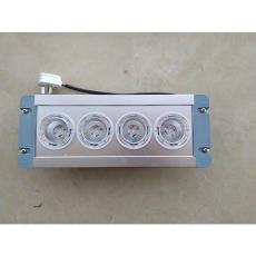 NFE9121配电室LED应急灯配电房壁挂式照明灯