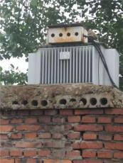 北海变压器回收-二手变压器回收厂家