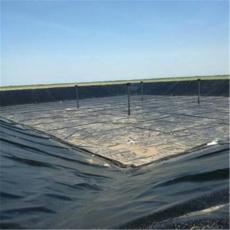 魚塘養殖專用防滲膜  土工膜  復合土工膜