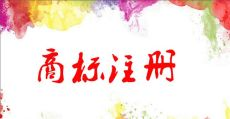 奇迈先生商标注册399元/件一站式服务包官费