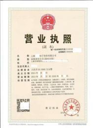 办上海全网SP许可申请材料怎么写