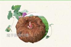 魔芋膳食纤维粉魔芋膳食纤维包邮